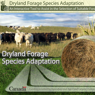past-projects-sk-dryland-forage.jpg